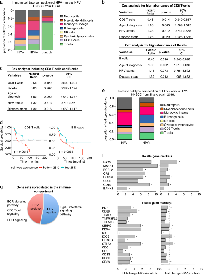 Histoepigenetic analysis of HPV- and tobacco-associated head and