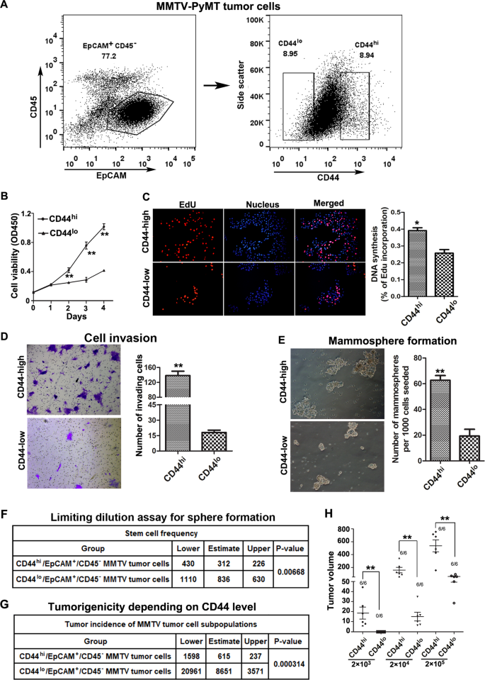 Inducible formation of leader cells driven by CD44 switching