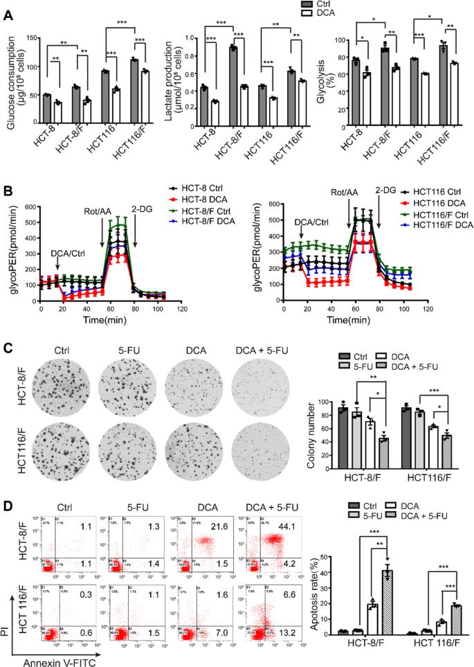 Dichloroacetate restores colorectal cancer chemosensitivity through th