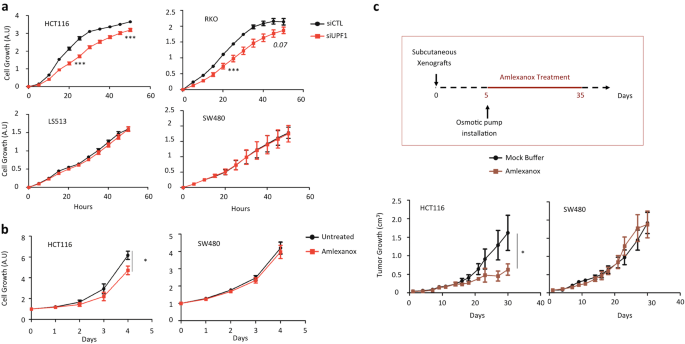 Targeting nonsense-mediated mRNA decay in colorectal cancers