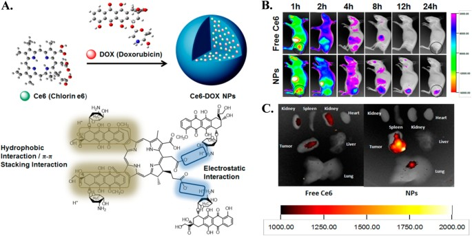 Controlled drug delivery vehicles for cancer treatment and