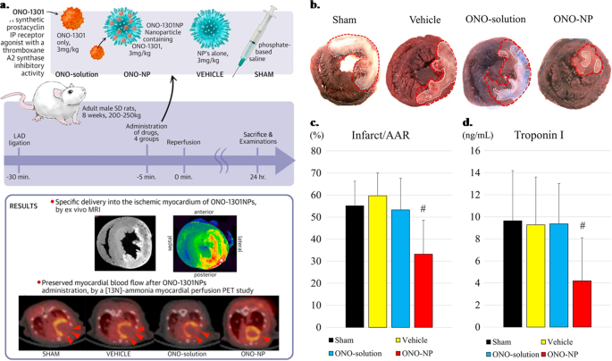 Targeted therapy in chronic diseases using nanomaterial