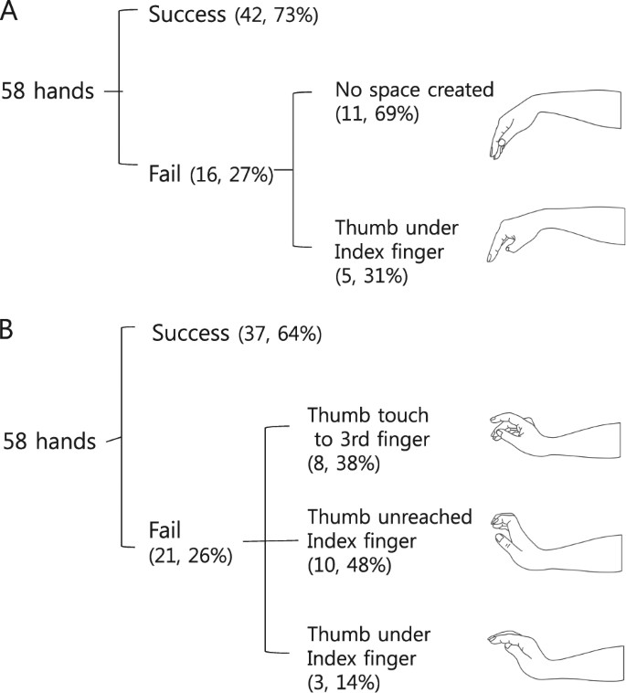 The natural course of passive tenodesis grip in individuals