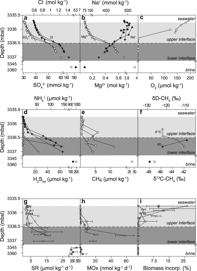 Life on the edge: active microbial communities in the Kryos