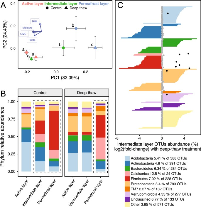 Long-term in situ permafrost thaw effects on bacterial