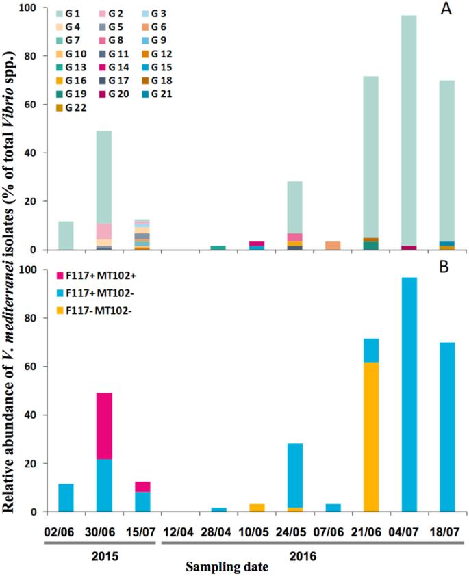 Genetic diversity and phenotypic plasticity of AHL-mediated Quorum