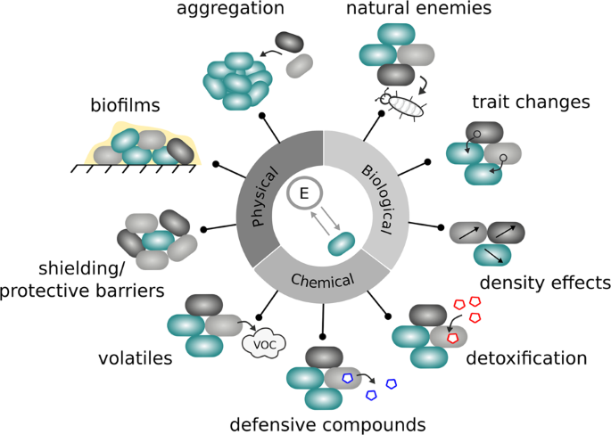 Associational effects in the microbial neighborhood | The ISME Journal