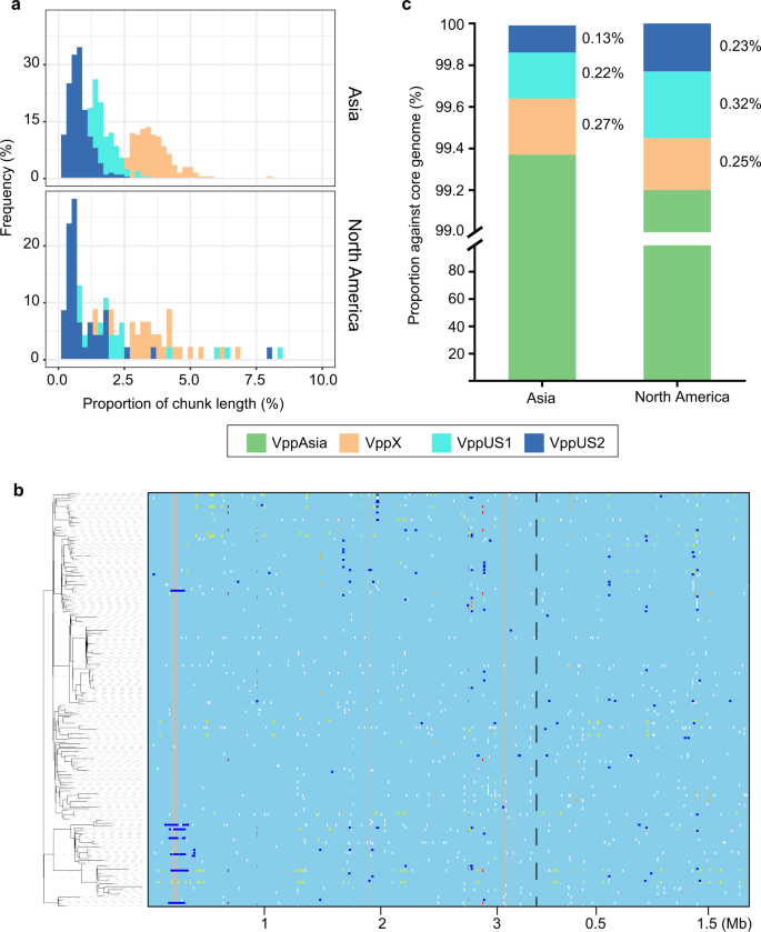 Recent mixing of Vibrio parahaemolyticus populations   The ISME Journal