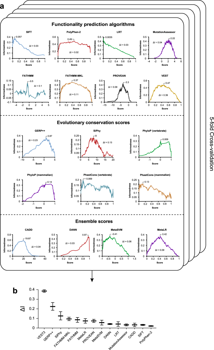 An optimized prediction framework to assess the functional impact of