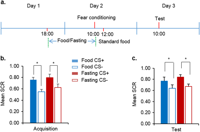 Fasting Enhances Extinction Retention And Prevents The Return Of Fear In Humans Translational Psychiatry Older versions of this spell were reversible, known as remove fear, and bolstered the morale and courage of the recipients. fasting enhances extinction retention