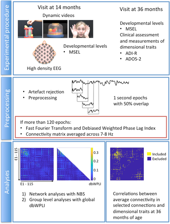 Functional EEG connectivity in infants associates with later