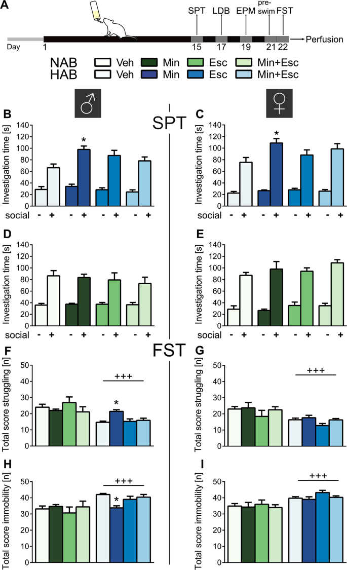Minocycline alters behavior, microglia and the gut microbiome in a tra