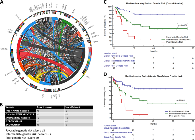 A novel machine-learning-derived genetic score correlates with measura