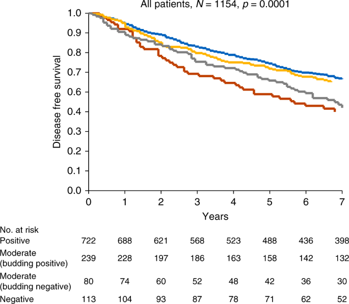 Prognostic Impact Of Cdx2 In Stage Ii Colon Cancer Results From Two Nationwide Cohorts British Journal Of Cancer