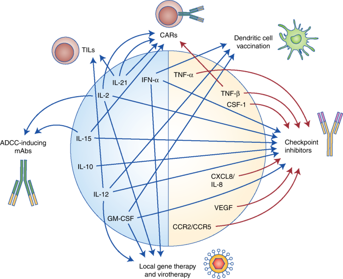 Cytokines in clinical cancer immunotherapy | British Journal of Cancer
