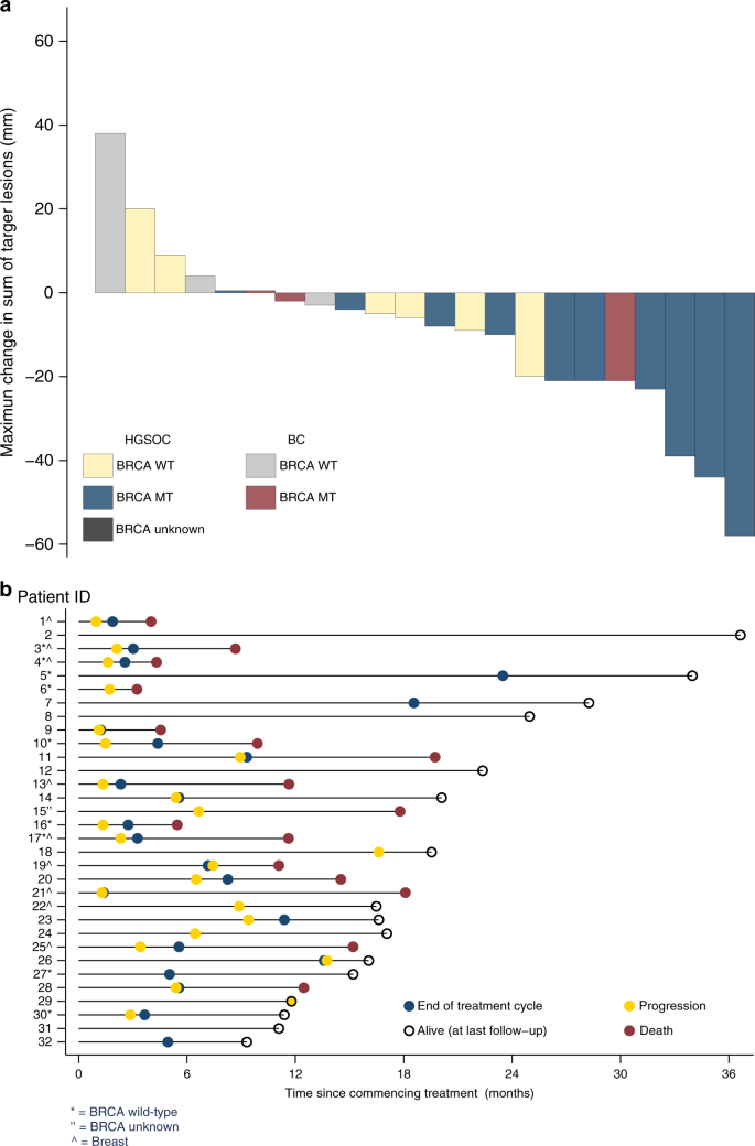 Phase 1 Trial Of Olaparib And Oral Cyclophosphamide In Brca Breast Cancer Recurrent Brca Ovarian Cancer Non Brca Triple Negative Breast Cancer And Non Brca Ovarian Cancer British Journal Of Cancer