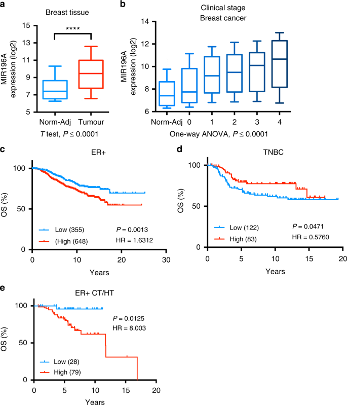 MicroRNA-196a is regulated by ER and is a prognostic