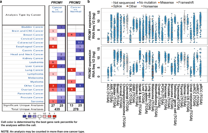 Prom1 And Prom2 Expression Differentially Modulates Clinical Prognosis Of Cancer A Multiomics Analysis Cancer Gene Therapy