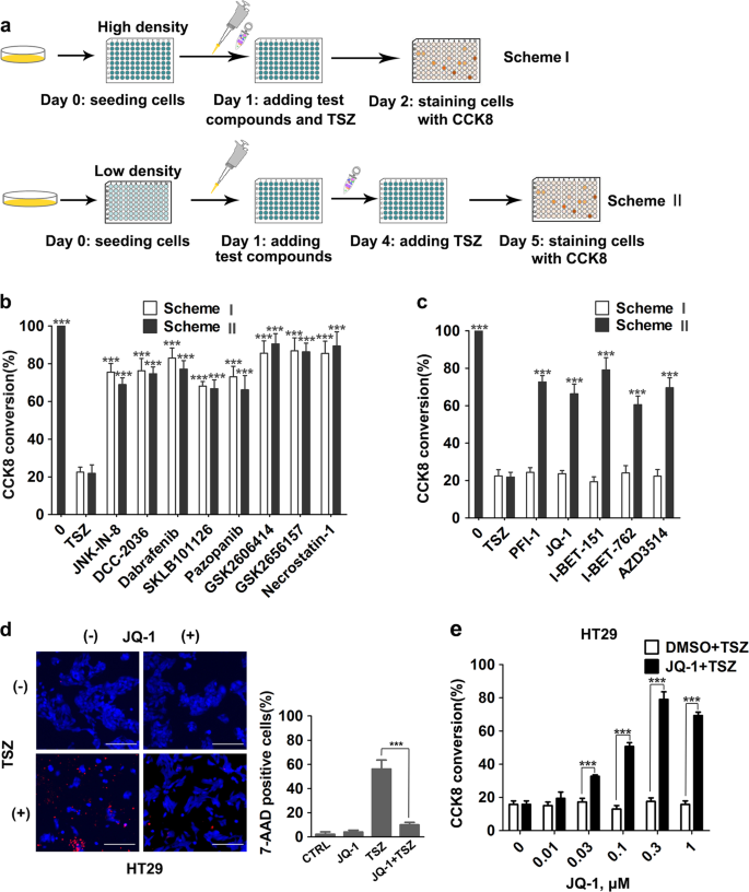 The bromodomain protein BRD4 positively regulates