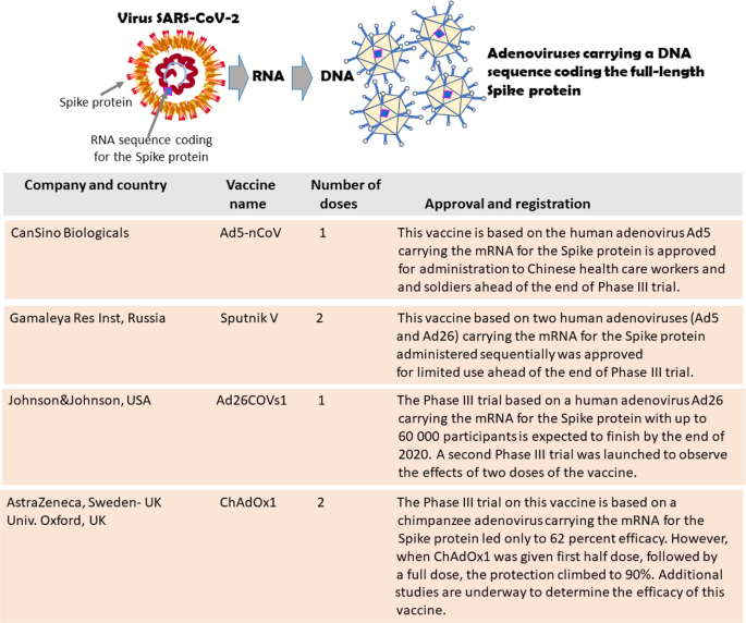 COVID-19 vaccines: where we stand and challenges ahead | Cell Death &  Differentiation
