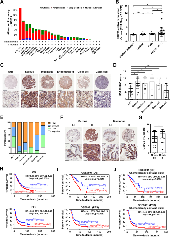 Deubiquitinase Usp35 Restrains Sting Mediated Interferon Signaling In Ovarian Cancer Cell Death Differentiation