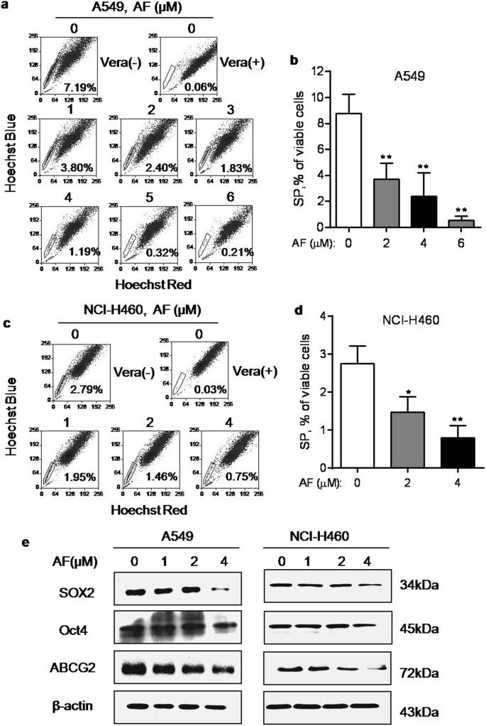 Elimination Of Stem Like Cancer Cell Side Population By