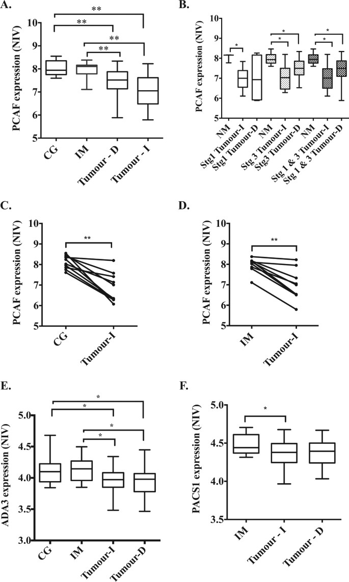 Down-regulation of a pro-apoptotic pathway regulated by PCAF