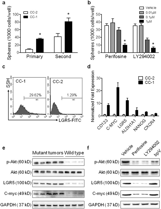 Pik3ca Mutations Confer Resistance To First Line Chemotherapy In Colorectal Cancer Cell Death Disease