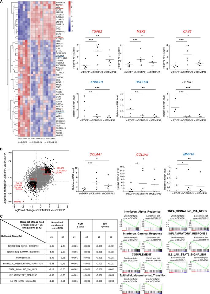 CEMIP (KIAA1199) induces a fibrosis-like process in osteoarthritic