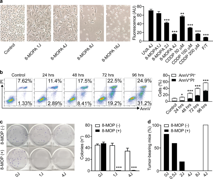 Extracorporeal photochemotherapy induces bona fide immunogenic cell de