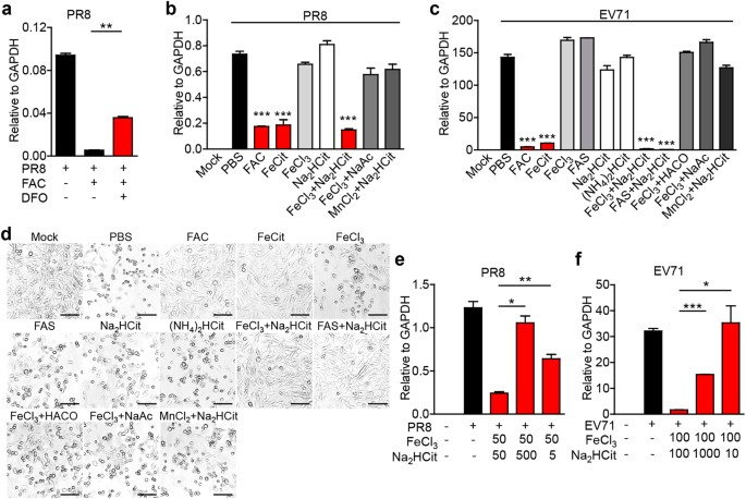 Antiviral effects of ferric ammonium citrate   Cell Discovery