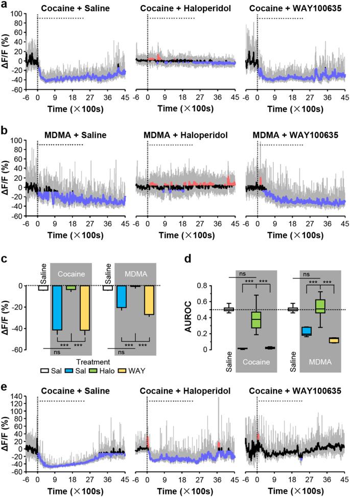 Response dynamics of midbrain dopamine neurons and serotonin