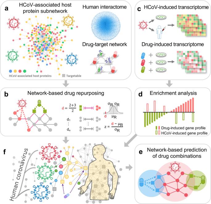 Network Based Drug Repurposing For Novel Coronavirus 2019 Ncov Sars Cov 2 Cell Discovery