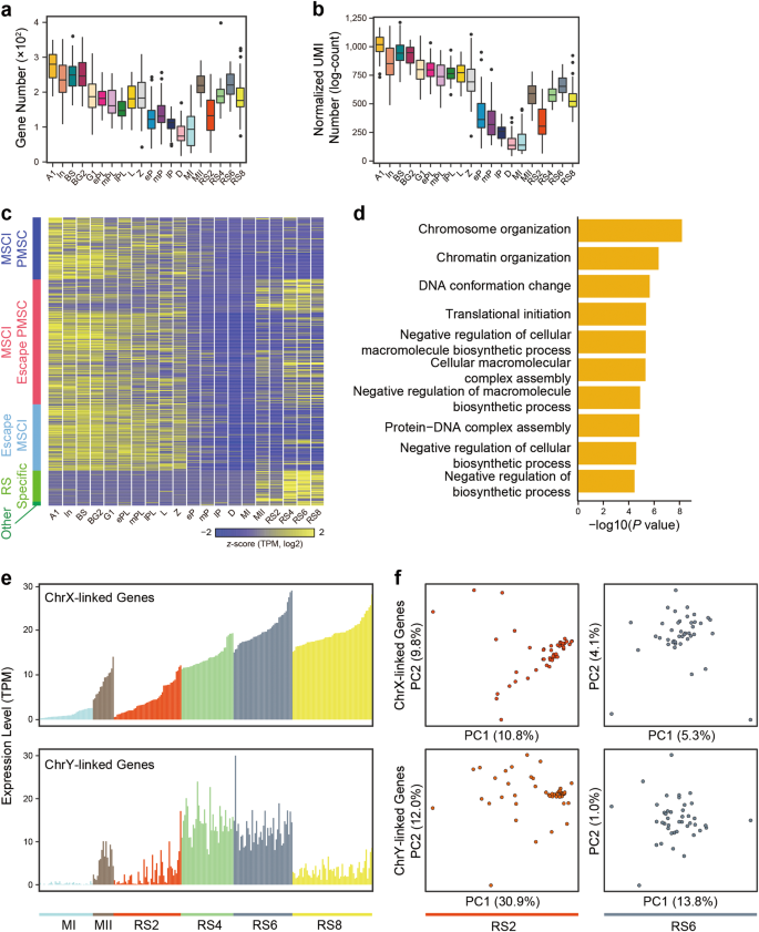 Single-cell RNA-seq uncovers dynamic processes and critical