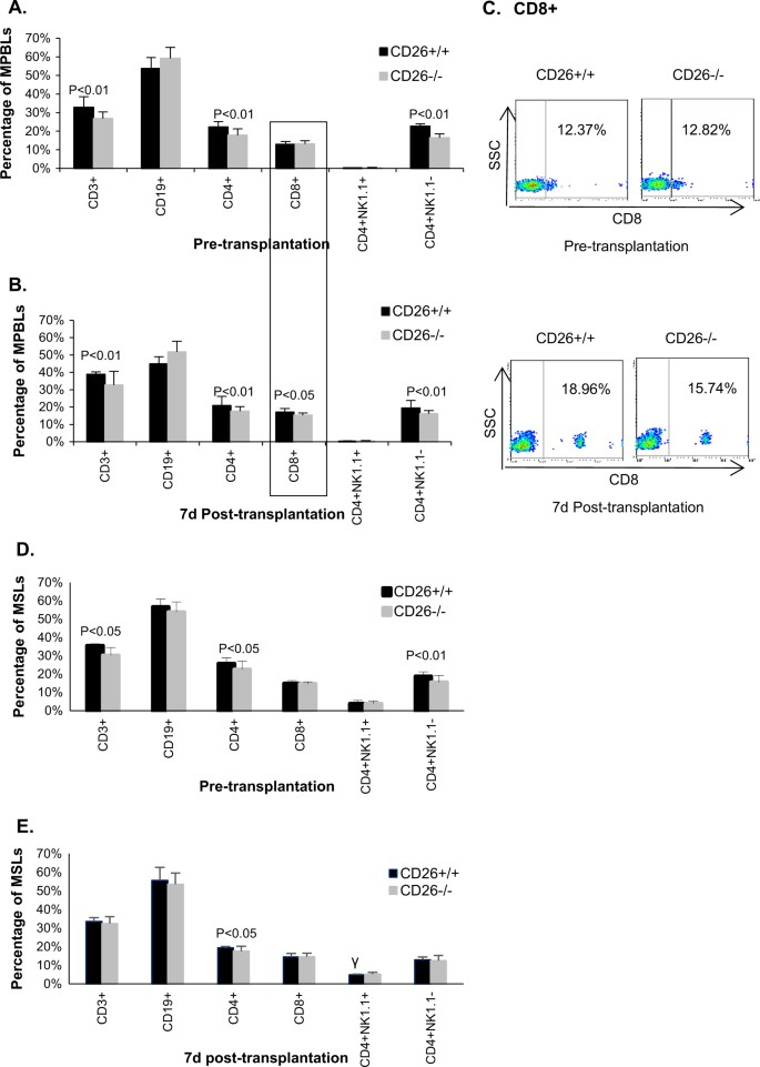 Delayed allogeneic skin graft rejection in CD26-deficient mice