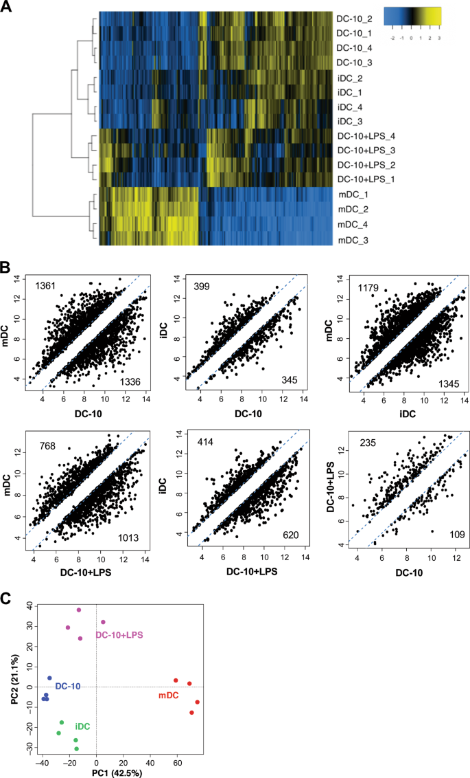 Coexpression of CD163 and CD141 identifies human circulating IL-10