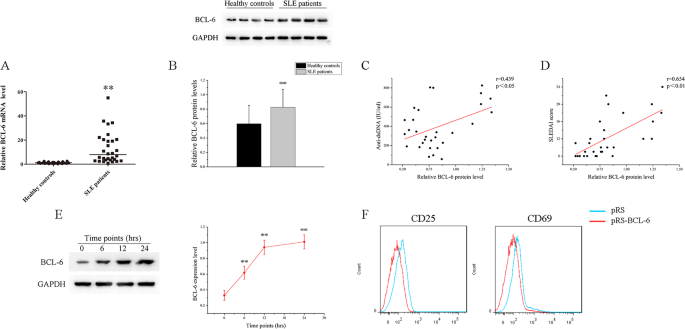 BCL-6 suppresses miR-142-3p/5p expression in SLE CD4 + T cells by modu