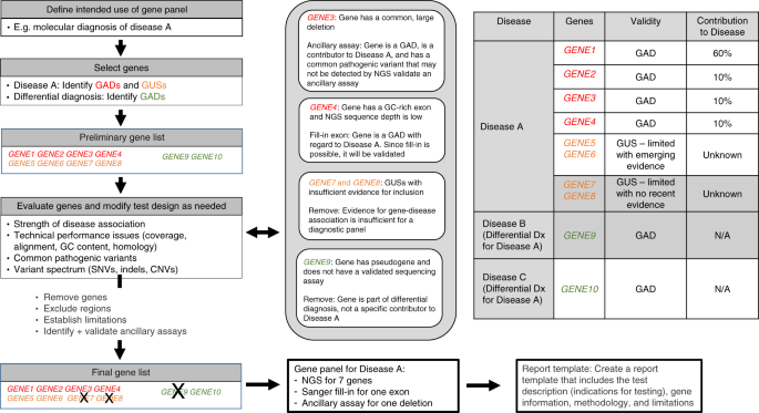 Diagnostic gene sequencing panels: from design to report—a techn