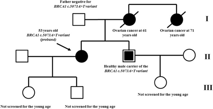 Preliminary Molecular Evidence Associating A Novel Brca1 Synonymous Variant With Hereditary Ovarian Cancer Syndrome Human Genome Variation