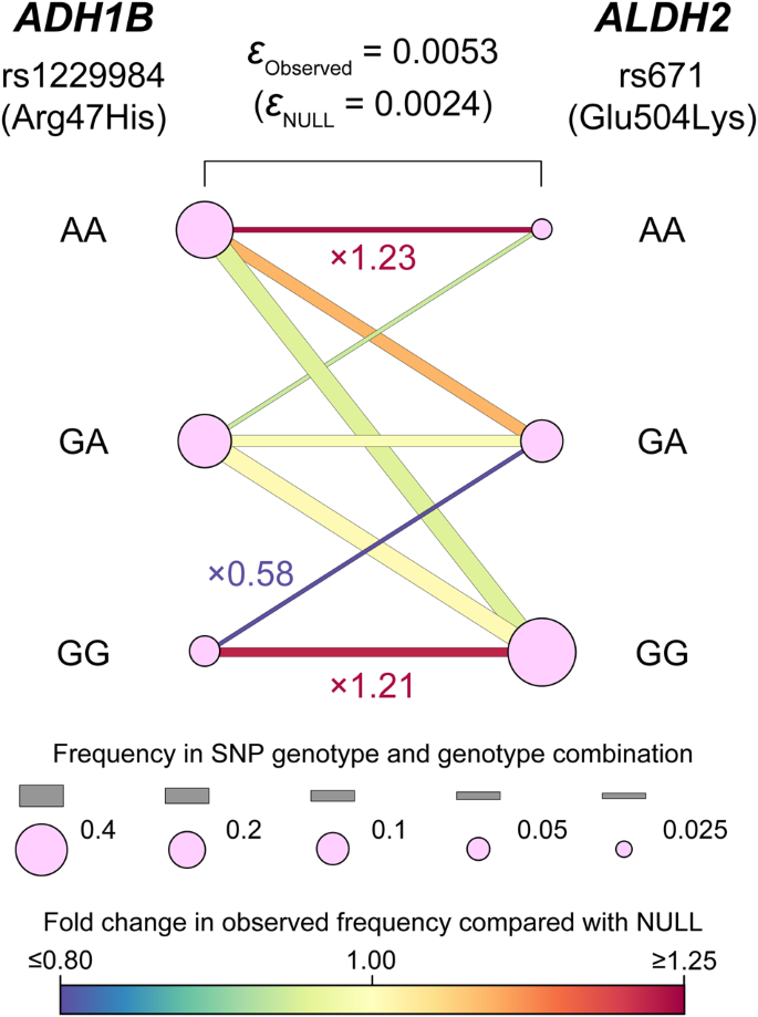 Eld Entropy Based Linkage Disequilibrium Index Between Multiallelic Sites Human Genome Variation