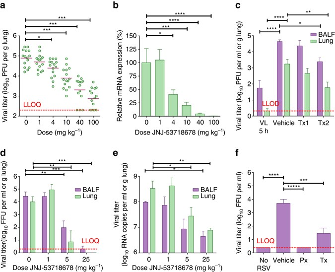Therapeutic efficacy of a respiratory syncytial virus fusion