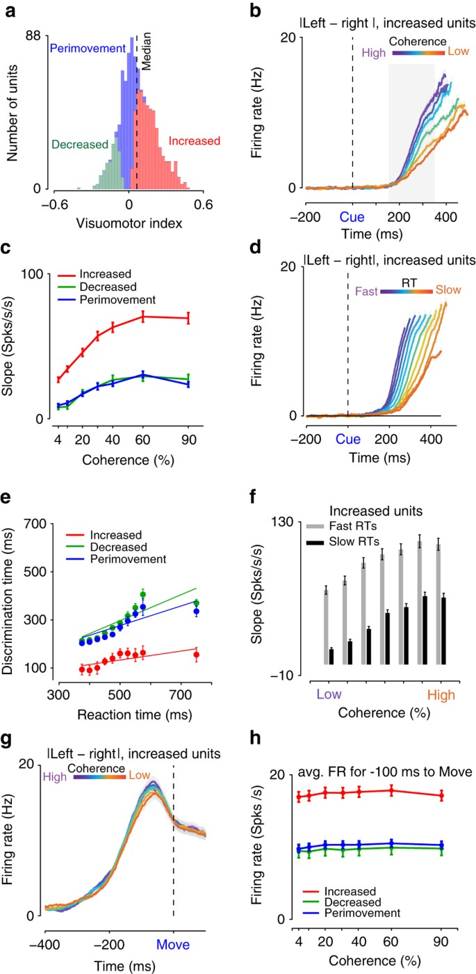 Laminar differences in decision-related neural activity in