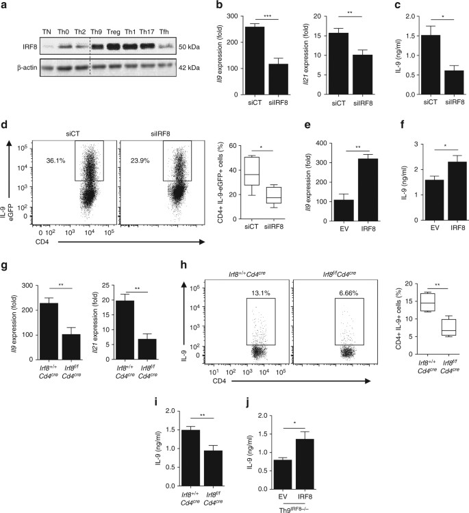 IRF8-dependent molecular complexes control the Th9