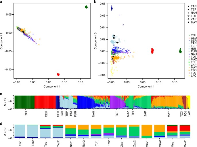 Demographic history and biologically relevant genetic