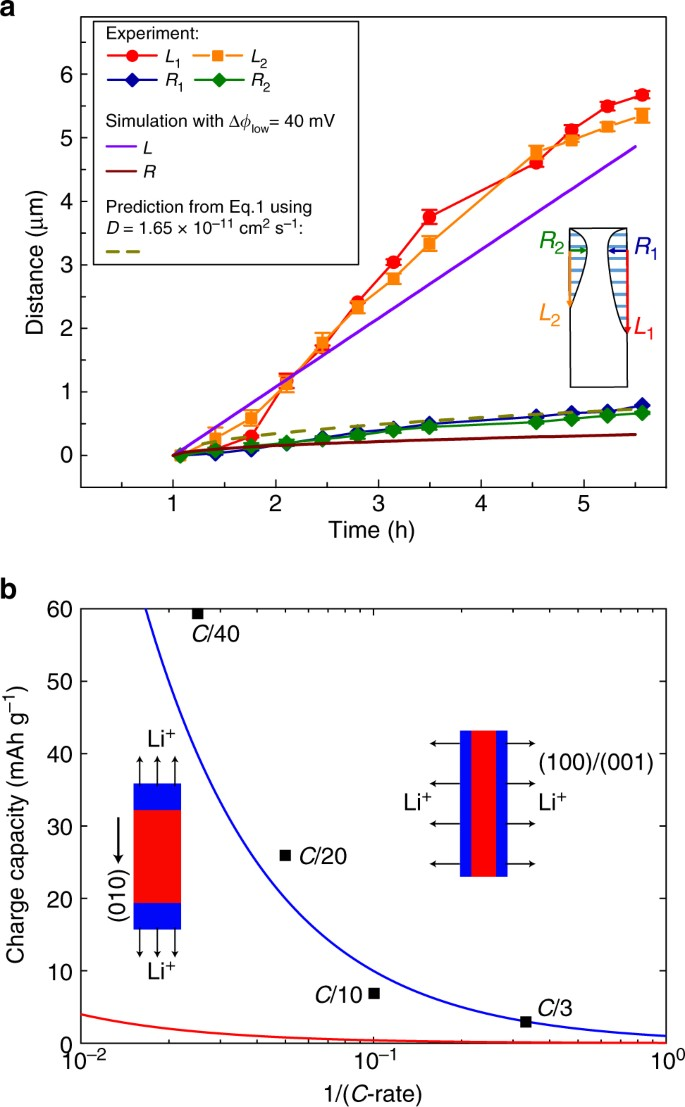 Two-dimensional lithium diffusion behavior and probable