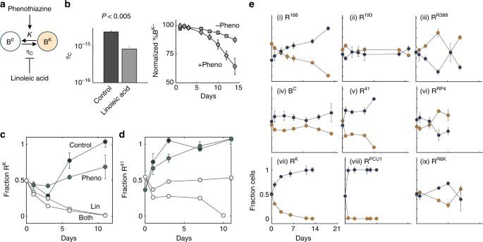 Persistence and reversal of plasmid-mediated antibiotic