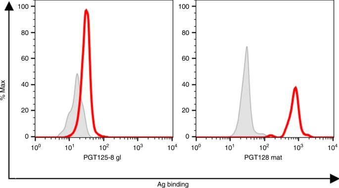 Bacterially derived synthetic mimetics of mammalian