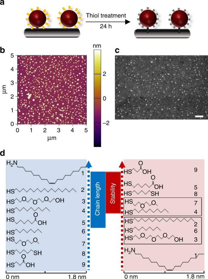 Retarding oxidation of copper nanoparticles without