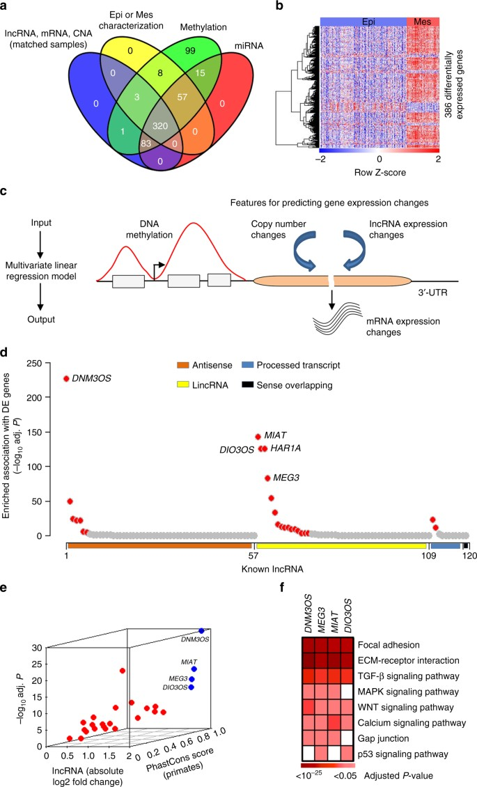 Decoding Critical Long Non Coding Rna In Ovarian Cancer Epithelial To Mesenchymal Transition Nature Communications