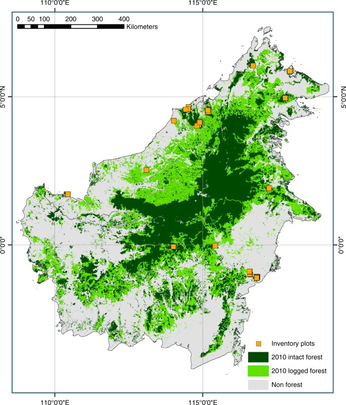 Long-term carbon sink in Borneo's forests halted by drought